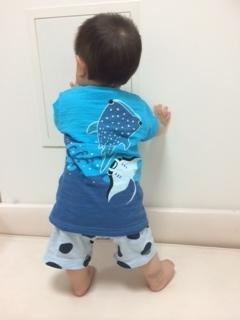 沖縄Tシャツ3.JPG